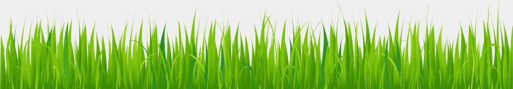 grass_brushes_by_thenova7339-d7awxba